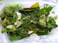 Малосольные огурчики быстрого приготовления (в пакете)