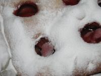 Фокачча снежная