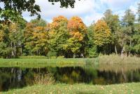 Осень в Александровском парке.