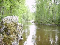 По речке Тихой. Путь из Приозерска в Ладогу.