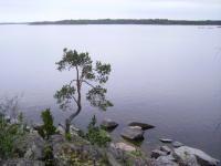 Ладога, Карелия. Остров Большой Черный.