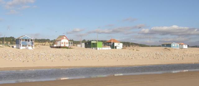 Португалия, Costa da Caparica. Пляж.
