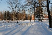 Колпино, середина января