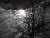 весна.марток :)