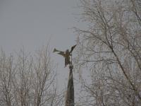 Кириллов. Кирилло-Белозерский монастырь. Ангел на шпиле Казанской башни.