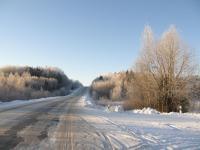 Зимний пейзаж. Дорога в Горицы