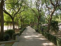 Испания, Севилья. В парке Prado de San Sebastian.