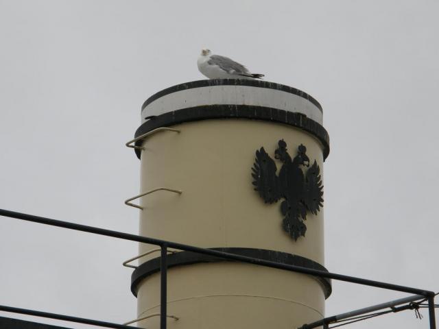 Хельсинки. Двуглавый орел.