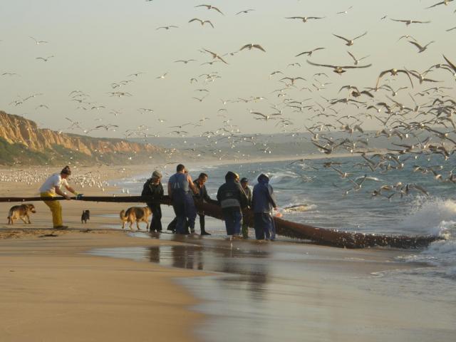 Португалия, Атлантика. Рыбаки.