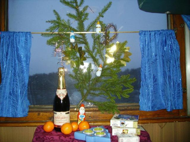 Новый год. Поезд Москва-Симферополь.
