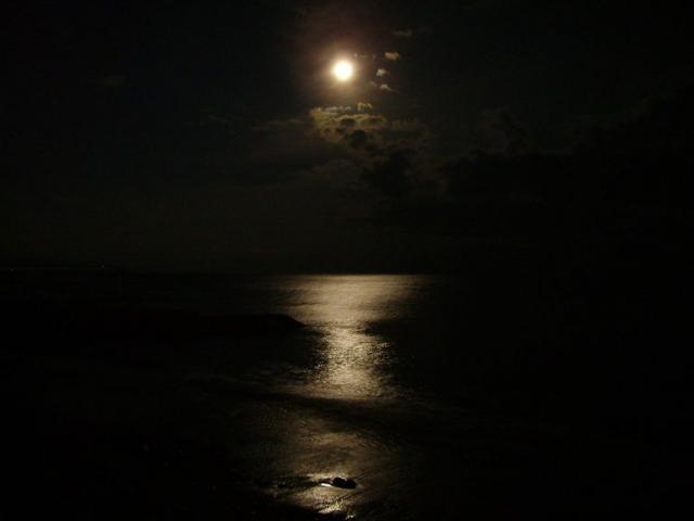 Новый Год, Крым, Алушта. Лунная дорожка.